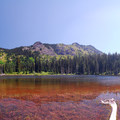 Typical sight along the PCT. One of the three lakes at Short Trail Camp.- America's Incredible Thru-Hikes