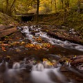 Be sure to check out the creek below the Historic Columbia River Gorge Highway.- Best Fall Hikes Near Portland