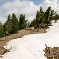 Hiking up to Dunraven Pass.- Mount Washburn via Dunraven Pass