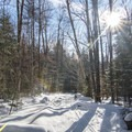 A smooth cut path through the forest to Whiteface Landing.- Winter Destination Spotlight: 48 Hours in the Adirondacks