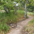 Red Rock Canyon Trail.- The Complete Guide to Rancho Palos Verdes, California