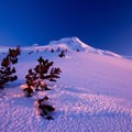 The dry, crusty, wind-beaten snow almost resembles sand.- Mount Hood Wilderness