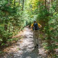 The trail to Zealand Falls is easy going, meaning the whole family can enjoy the amazing scenery.- 20 Best Family-Friendly Adventures in New Hampshire