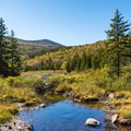 Discover scenic mountain views along the relatively easy Zealand Falls Trail in the heart of White Mountains National Forest.- Ultimate Leaf-Peeping Road Trip through New England