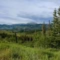 Bridger-Teton National Forest.- Seven Largest National Forests