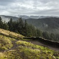 Cape Perpetua: View southeast toward the Siuslaw National Forest.- Wednesday's Word - Yachats