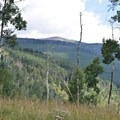 Bald Mountain and the surrounding proposed wilderness area.- Protecting Spraddle Creek Wilderness and the Continental Divide