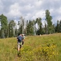 Hiking up toward the large aspen groves.- Protecting Spraddle Creek Wilderness and the Continental Divide