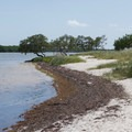 Curry Hammock State Park- The Best of Florida's State Parks