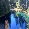 Welcome back to Tamolitch!- McKenzie River Trail: Carmen Reservoir to Tamolitch Pool