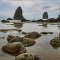 The Needles in the distance with anemone exposed- Cannon Beach