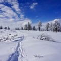 A look back at the path carved through the snow.- Bryce Canyon National Park