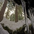 Looking up and out- Guler Ice Caves