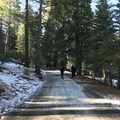 Walking from the parking lot to the main pool. Beautiful walk, but be prepared with proper warm clothes/shoes in the winter. - Sierra Hot Springs