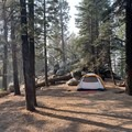 Spacious as hell. Backs up to a pile of rocks and the wilderness. - Azalea Campground