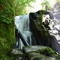 Sweet Creek Falls- Sweet Creek Hike