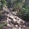 This is part of the trail.- Kings Mountain