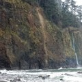 View from the beach- Cape Meares Big Spruce + Beach Trail