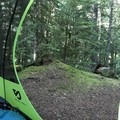 view from my tent in the morning.- Lost Creek Campground