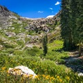 If you attempt this hike in late June/July, wildflowers are bursting with color everywhere you look!- Monarch Lakes Hike
