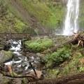 Elowah Falls HIke
