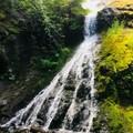 Sweeny Falls