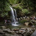 LeConte Lodge Llamas passing under Grotto Falls as they deliver supplies to the LeConte Lodge on Mount LeConte. - LeConte Lodge