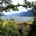 View from lower trail- Cape Horn Loop Hike