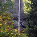 Latourell Falls. - Latourell Falls Hike