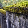 Moss covered bridge along the Historic Columbia River Gorge Highway.- Latourell Falls Hike
