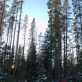 Snowshoeing in the Deschutes National Forest.- Swampy Lakes, Porcupine Snowshoe Loop