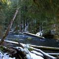 McKenzie River during winter. - McKenzie River Trail