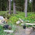 Campsite at Sand Point in Olympic National Park.- Ozette Triangle Loop Trail