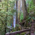 Marymere Falls.- Marymere Falls Hike