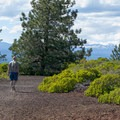 Walking the short trail on top of Lava Butte.- Lava Butte + Lookout Tower