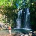 Majestic Falls. - McDowell Creek Falls County Park