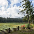 Fish Lake along the Santiam Wagon Road.- Fish Lake Remount Depot
