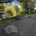 Site #1- Dearhamer Campground