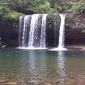 Butte Creek Falls - Butte Creek Falls Hike