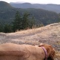 Little Summit, just before sunset.- Orcas Island, Mount Constitution Hike