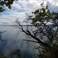 Looking South across the bay.- Camano Island State Park Loop Trails