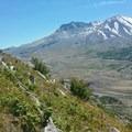 Trail/St Helens- Hummocks Trail