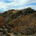 Looking Westward!!!- Coyote Wall Hiking Trail
