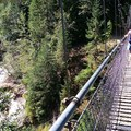 Krista crossing Bridge!- Lava Canyon