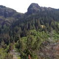 Saddle Mountain- Saddle Mountain