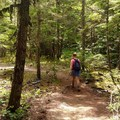 Krista on the Trail!- Yocum Ridge