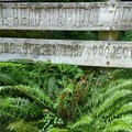 Trail Sign!!!!- Cascade Head Hike