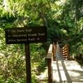 Trail Sign and Bridge!!!- Neahkahnie Mountain Hike