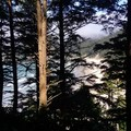 Short Sands Beach from Elk Flats Trail!!!- Neahkahnie Mountain Hike
