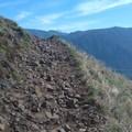 Hood!- Little Hamilton Mountain Hike
